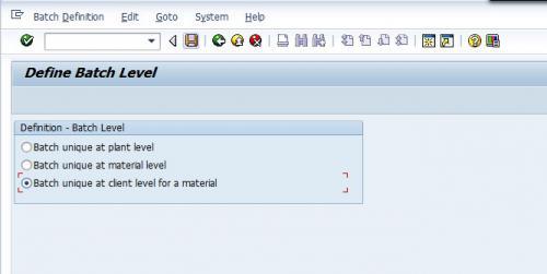 SAP Batch Level Configuration