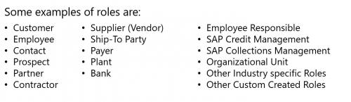 Example of Business Partner Roles