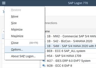 SAP GUI web browser option