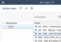 sap gui for windows 7.70