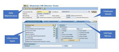 Maintain SAP employee data