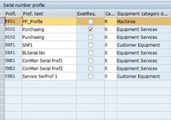 sap serial number configuration