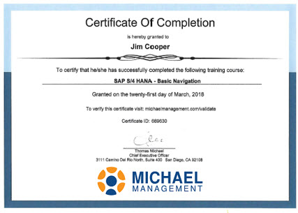 SAP certificate by Michael Management