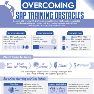 Overcoming SAP training obstacles