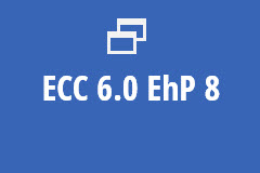ECC 6.0  EhP 8 on HANA - Annual Subscription