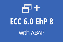 ECC 6.0 with ABAP - Monthly subscription