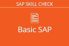 Basic SAP Skills Assessment