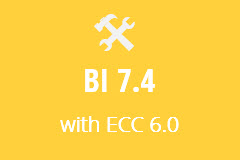 BI 7.4 with ECC 6.0 - Monthly Subscription