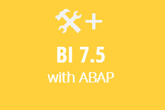 BI 7.5 with ABAP on HANA - Yearly Subscription