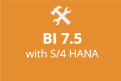 SAP S/4 HANA with BI 7.5 - Monthly Subscription
