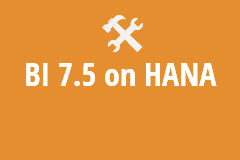 BI 7.5 on HANA - Annual Subscription