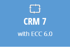 CRM 7 with ECC 6.0 - Annual Subscription