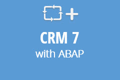 CRM 7 EhP 2 with ABAP - Monthly Subscription