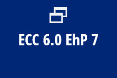 ECC 6.0 EhP 7 - Yearly Subscription