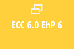 ECC 6.0 EhP 6 - Yearly Subscription