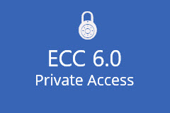 ECC 6.0 Dedicated SAP Access (3 months)