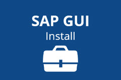 SAP Access Setup One-On-One Live Online Training Session