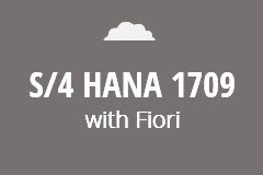 SAP S/4 HANA 1709 with Fiori - Yearly Subscription