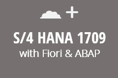 SAP S/4 HANA 1709 with ABAP and Fiori - Monthly Subscription