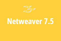 SAP Netweaver 7.5 with ABAP - Monthly Subscription
