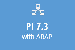 SAP PI 7.3 with ABAP - Monthly Subscription