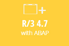 R/3 4.7 with ABAP - Monthly subscription