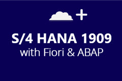 SAP S/4HANA 1909 with ABAP and Fiori - Monthly Subscription