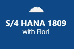 SAP S/4 HANA 1809 with Fiori - Annual Subscription