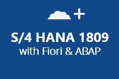 SAP S/4 HANA 1809 with ABAP and Fiori - Yearly Subscription
