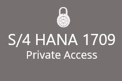 S/4 HANA 1709 with Fiori Dedicated SAP Access (12 months)