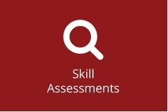 SAP Skill Assessments - Individual
